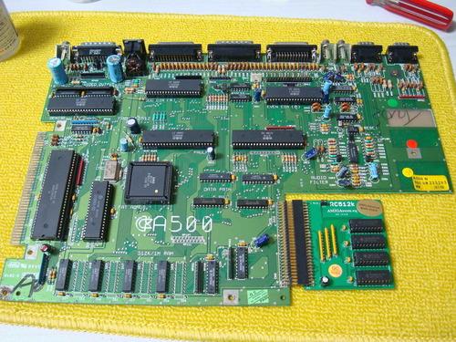 DSC01499.JPG